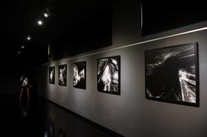 Galleria, spazio espositivo